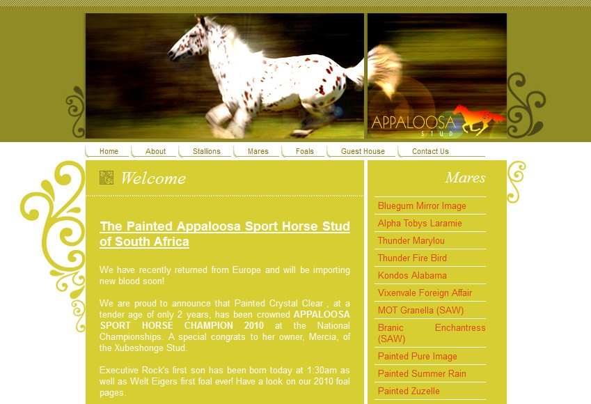 http://www.appaloosastud.co.za/